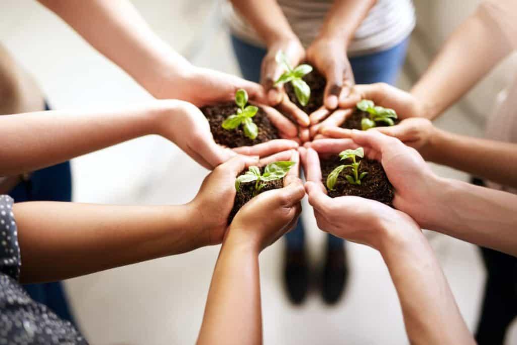 energie verte cooperative enercoop